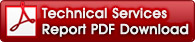 Technical services report PDF file download